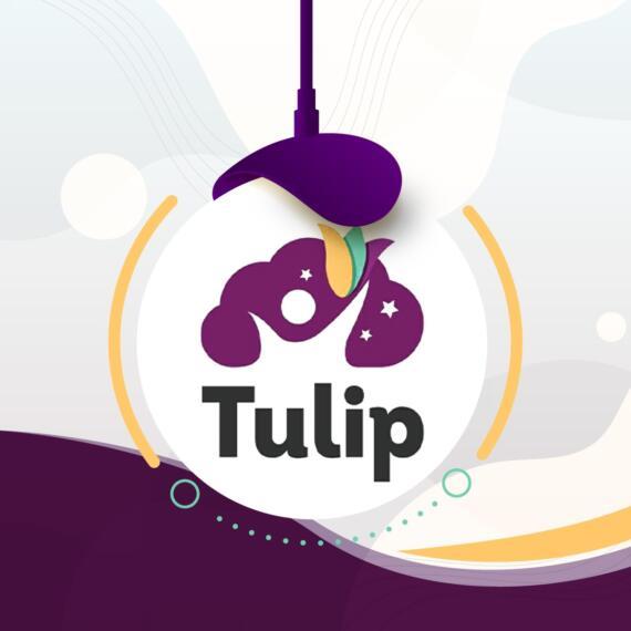 روضة توليب - Tulip